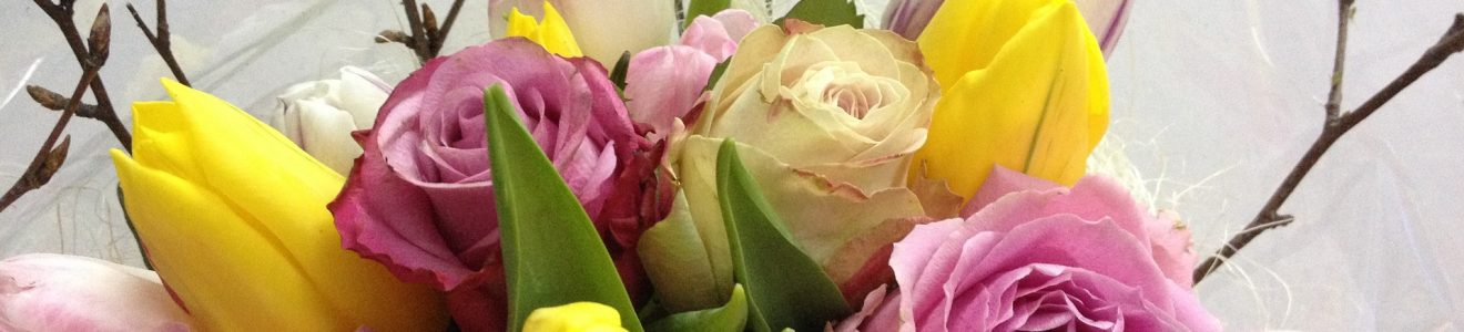 roses-2712756_1920